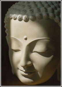 Meditation Reveals...